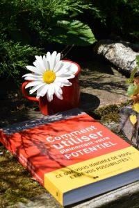 Comment utiliser pleinement votre potentiel, un livre de Bruno Lallement